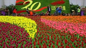 Exhibición floral internacional 2017 de Hong-Kong almacen de video