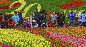 Exhibición floral internacional 2017 de Hong-Kong Imagen de archivo