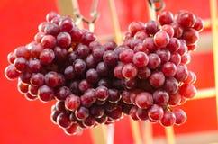 Exhibición fresca de la uva en mercado Imagen de archivo libre de regalías