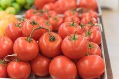 Exhibición jugosa de los tomates del racimo en el mercado del granjero con la muestra del precio Fotografía de archivo libre de regalías