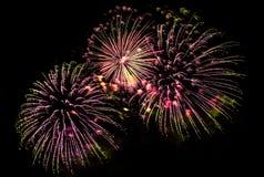 Exhibición multicolora de los fuegos artificiales Imágenes de archivo libres de regalías