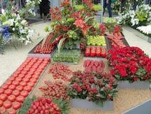 Exhibición roja de la fruta y verdura imagen de archivo libre de regalías