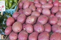 Exhibición roja de la parada de las patatas de la piel Imagen de archivo libre de regalías