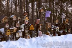Exhibition of birdhouses in Novosibirsk zoo. Exhibition of painted multi-colored birdhouses handmade on white snow in winter. Children`s creativity. Novosibirsk stock image