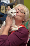 Exhibition and distribution of cats from a shelter Royalty Free Stock Image