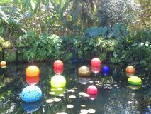 Exhibition of glass sculptures in a botanical garden. This is the one of the astonishing glass sculptures in the 2015 Miami Orchid Festival! What else can a Stock Photos