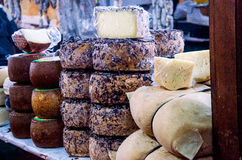 Exhibition of mixed italian cheeses. Exhibition of mixed cheeses in the market Stock Image