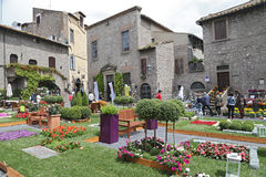 Exhibition San Pellegrino in Fiore in Viterbo - Italy. VITERBO, ITALY, MAY 4, 2014: Exhibition San Pellegrino in Fiore in Viterbo. The event in San Pellegrino in Royalty Free Stock Image
