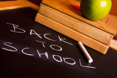 Exhibition of school. Back to school Royalty Free Stock Image
