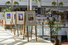 Exhibition of watercolor pictures Stock Photography