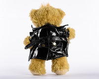Exhibitionist Teddy showing his penis, rear view. Exhibitionist Teddy with black jacket is showing his penis, rear view Royalty Free Stock Images