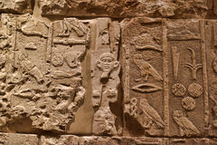 Exhibits from the collection of Neues Museum Royalty Free Stock Images