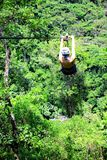 Exhilarated and free. Zip lining through the forest near Puerto Vallarta, Mexico Stock Images