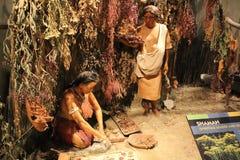 Exibição do curandeiro da cultura de Hopewell indicado no museu antigo do forte fotografia de stock