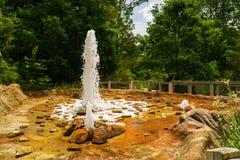 Exibição em Carolina Zoological Park norte - 2 dos geysers de Yellowstone fotos de stock royalty free