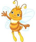 Exibição da abelha de rainha Imagens de Stock Royalty Free