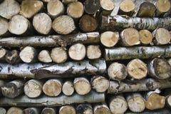 Existencias de la madera imagenes de archivo