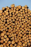 Existencias de madera imágenes de archivo libres de regalías