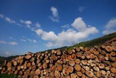 Existencias de madera Foto de archivo libre de regalías