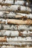 Existencias de madera Fotos de archivo libres de regalías