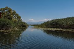 Exit from the bay to Skadar lake in Montenegro royalty free stock photos