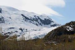 Exit Glacier Royalty Free Stock Photo