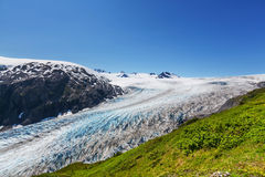 Exit glacier Stock Photography