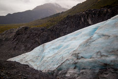 Exit Glacier Royalty Free Stock Photography