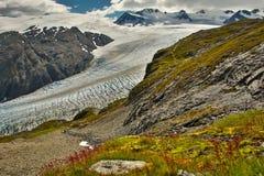 Exit glacier, the most famous glacier in Alaska. Accessible glacier adventure, easy hiking trail stock images