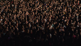 EXIT music festival 2015 Stock Photography