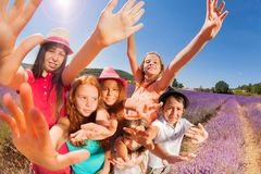 Exited kids in lavender field waving their hands Stock Photography