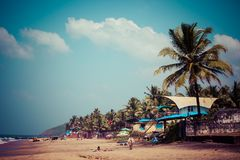 Exiting Anjuna beach panorama on low tide with white wet sand and green coconut palms, Goa, India Royalty Free Stock Photo