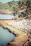 Exiting Anjuna beach panorama on low tide with white wet sand and green coconut palms, Goa, India Royalty Free Stock Photos