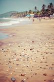 Exiting Anjuna beach panorama on low tide with white wet sand and green coconut palms, Goa, India Stock Image