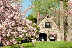 exklusiv tree för hus för Cherryfamiljframdel Royaltyfria Foton