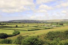 Exmoor Devon Anglia Zdjęcie Stock