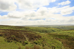Exmoor Devon England Stock Photo