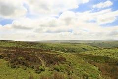 Exmoor Devon England. Rugged fields on Exmoor Devon England stock photo