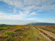 Exmoor landscape with heather, gorse and sea view. UK. Royalty Free Stock Images