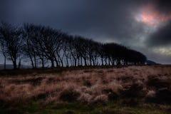 Exmoor Storm Stock Images