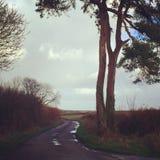Exmoor w swój pięknie zdjęcie stock