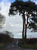 Exmoor w swój pięknie w colour fotografia stock