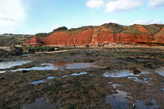 Exmouth beach Royalty Free Stock Image