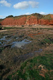 Exmouth cliffs and beach Royalty Free Stock Image