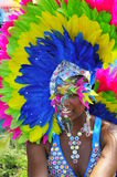 Exocit style. Painted face lady looking straight at camera while on the annual scotia bank caribbean festival in toronto august 4/2012 Royalty Free Stock Photos