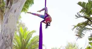 Exotic acrobatic dancer working out on silk ribbon stock video