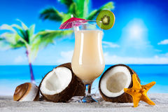 Exotic alcohol drinks, natural colorful tone Stock Images