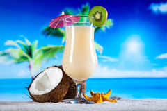 Exotic alcohol drinks, natural colorful tone Stock Photography