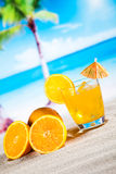 Exotic alcohol drinks, natural colorful tone Royalty Free Stock Photo