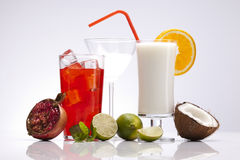 Exotic alcohol drinks set with fruits Stock Images